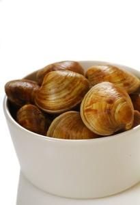 shutterstock_22091800-cherry-stone clams
