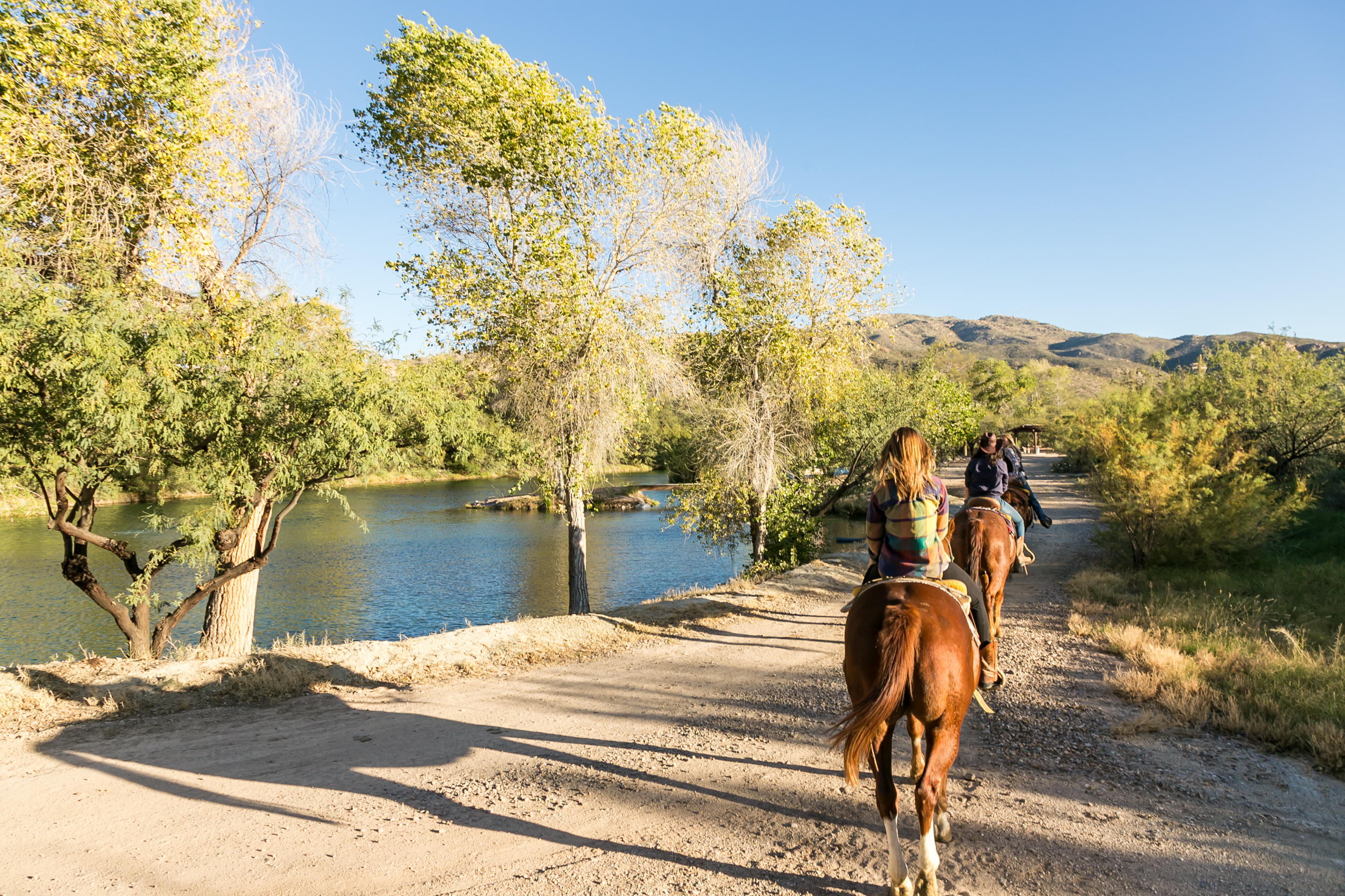 In the Saddle at Tanque Verde Dude Ranch  Luxe Beat Magazine