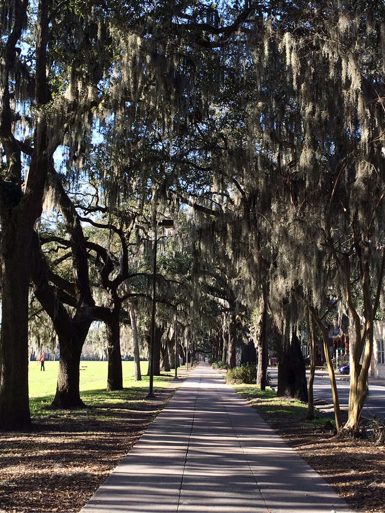 Savannah, Georgia: The Hostess City of the South