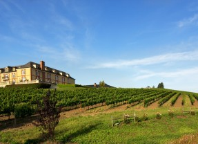 Domaine Carneros Sparkling Wines for Thanksgiving