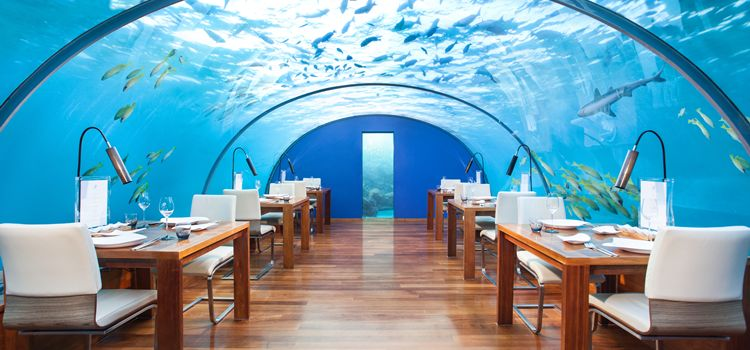 underwater experiences Maldives