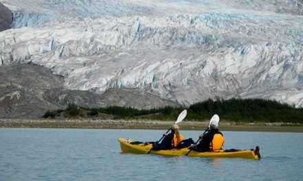 UnCruise Offers Savings on a Small Ship Adventure Cruise in Alaska, Costa Rica/Panama
