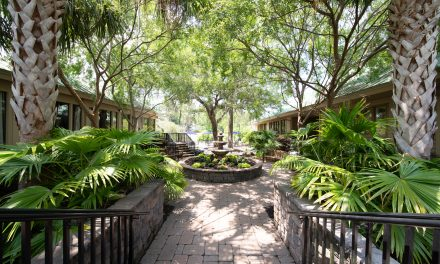 Embark on a Wellness Journey at Hilton Head Health