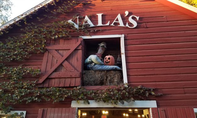Vala's Pumpkin Patch: Holiday Family Fun In Nebraska