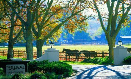 Alisal Guest Ranch & Resort Opening June 18th
