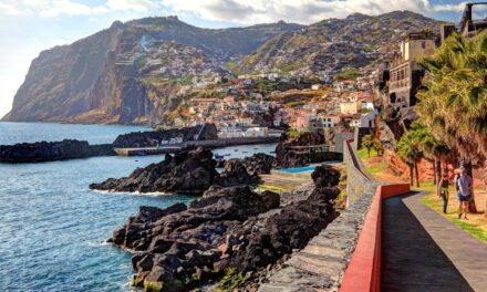 Madeira is opening July 1st for the perfect post pandemic escape