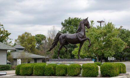 Virtual Tours and Safe Getaways Await in Kentucky