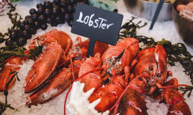 Behind the Lobster, with LobsterAnywhere's Kevin Fagan